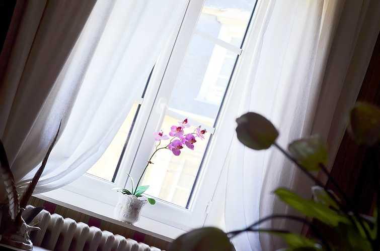 Quel style pour vos fenêtres ? dsc5302