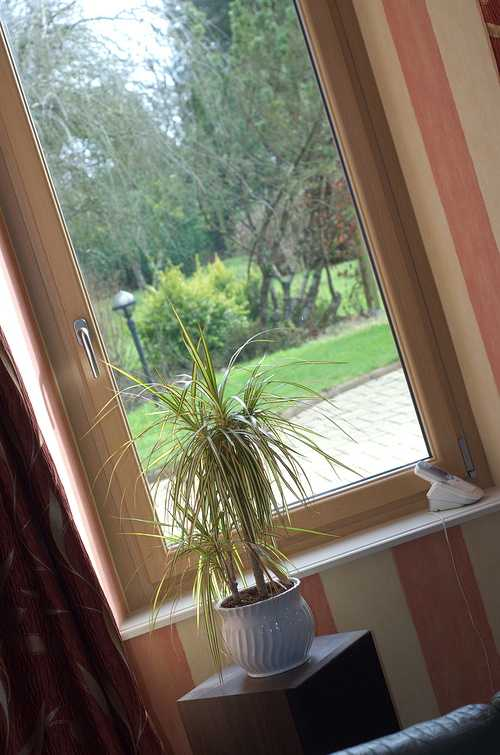 Quel style pour vos fenêtres ? 0