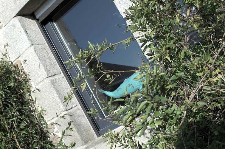 Fenêtres alu / fenêtres mixtes / Fenêtres PVC dsc1807